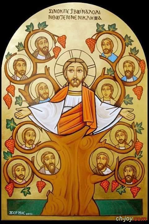 عيد آبائنا الرسل
