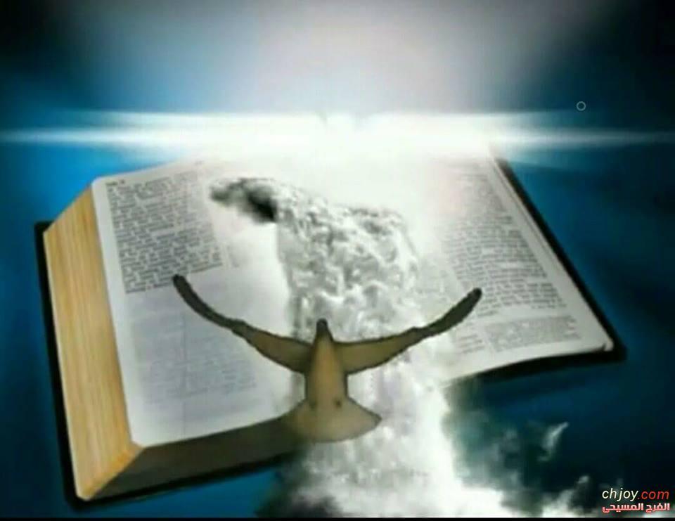 طريق الله هو طريق ضيّق