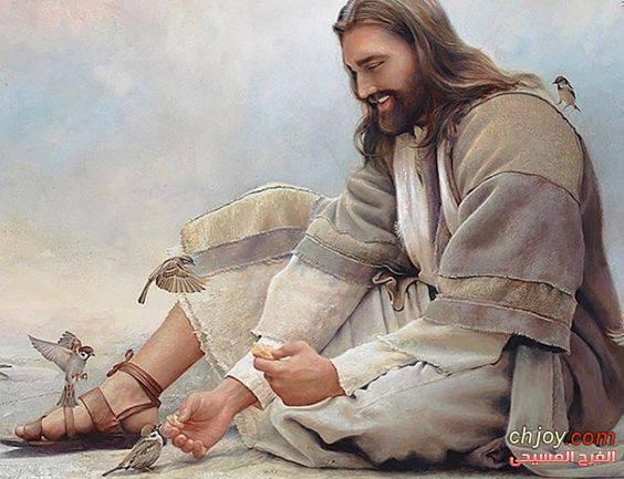 يسوع زى السكر