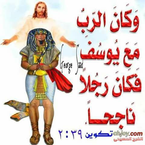 يوسف الشاب الناجح