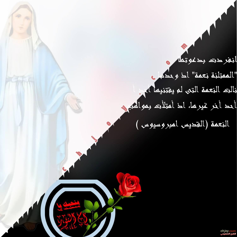 بنحبك يا عدرا وباقة مميزة من أجمل العبارات | للمبدعة مريم ميرو