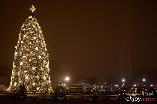 شجرة الكريسماس بالعاصمة واشنطن بالولايات المتحدة