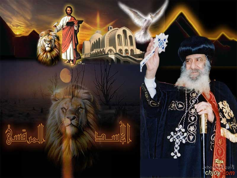 الاسد المرقسى  البابا شنودة الثالث
