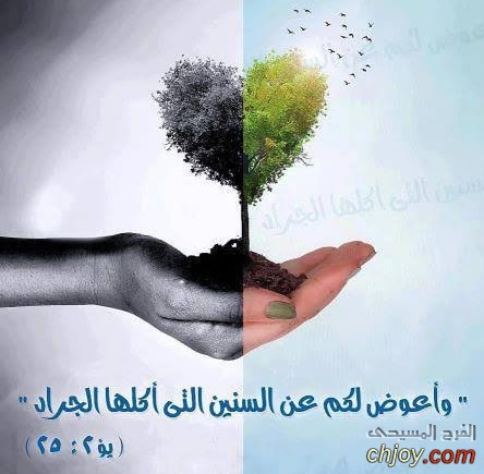 تفتكر ح يشبع بيها