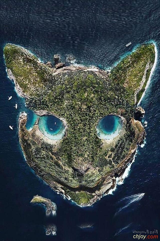 من روائع الطبيعة جزيرة القط الذهب أيسلندا