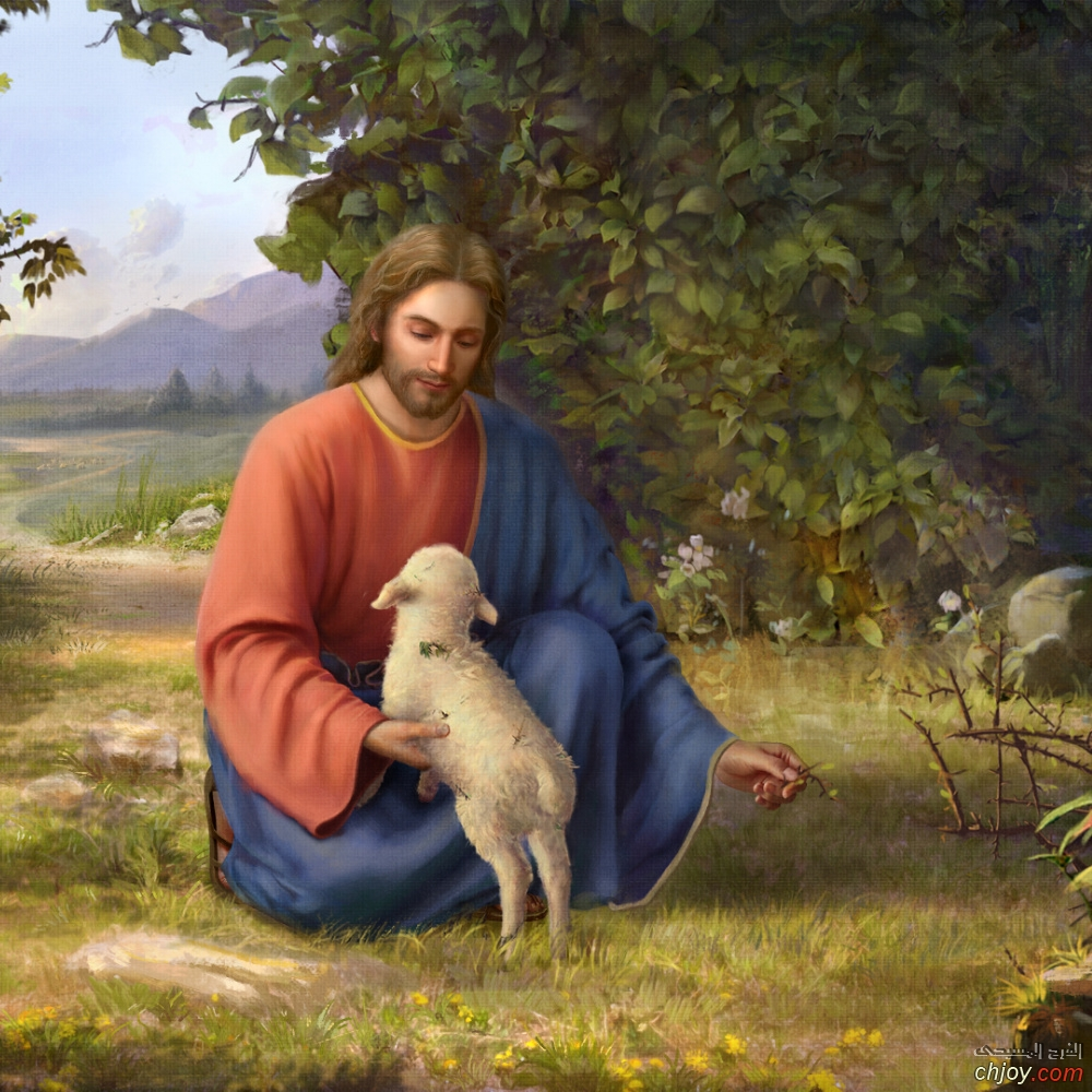وقت المحنه بسرعة لمحنا يسوع الحلو وجالنا قوام