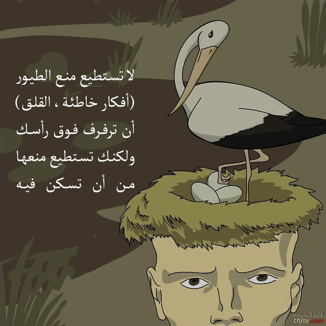لا تستطيع أن تمنع الطيور أن ترفرف فوق رأسك ولكنك تستطيع أن تمنعها من أن تسكن فيه