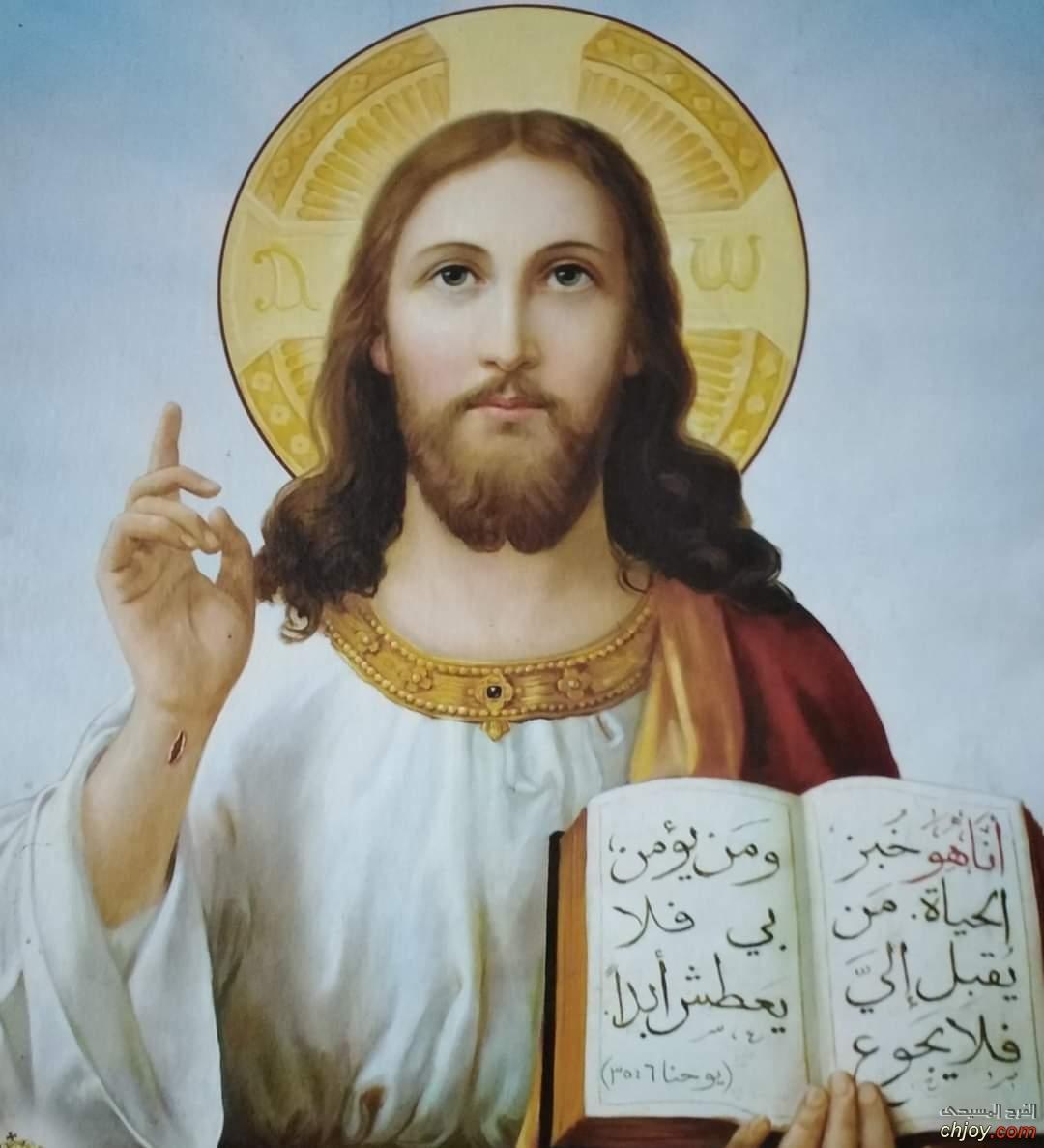 يسوع المسيح خبز الحياة ( يو ٦ : ٣٥)