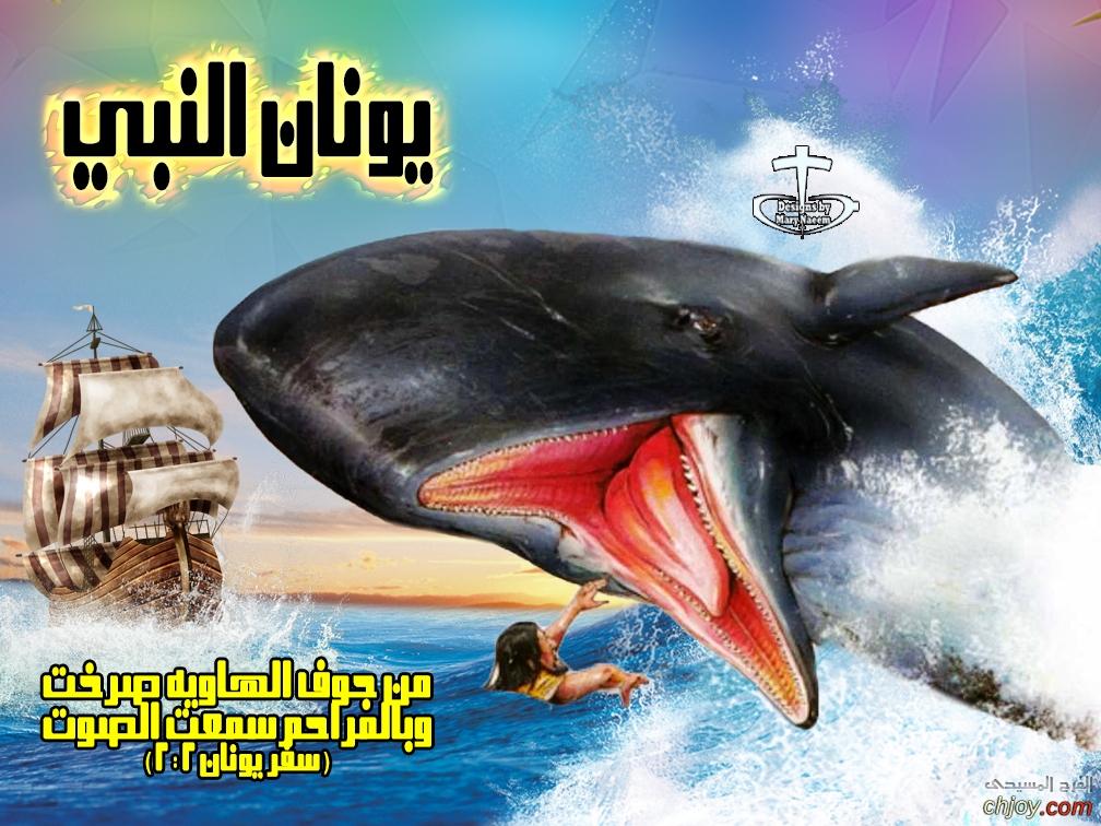 هل فعلاً إبتلع الحوت يونان؟