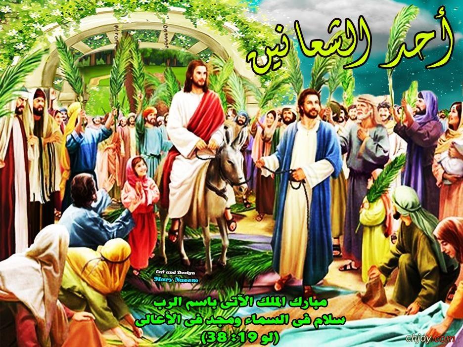 تفسير انجيل أحد الشعانين (يوحنا 12 /12-22)