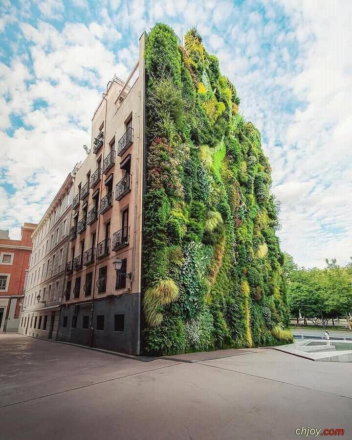 الحديقة العمودية مدريد إسبانيا