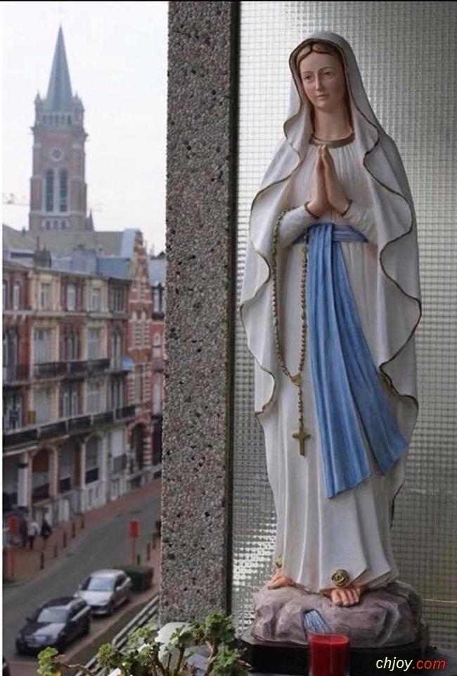 أمنية صباحية لك يا مريم